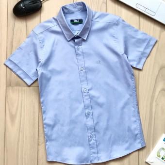 Рубашка Bold (146 - 164) 14481
