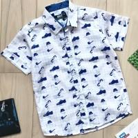 Рубашка Bold (104- 134) 14533